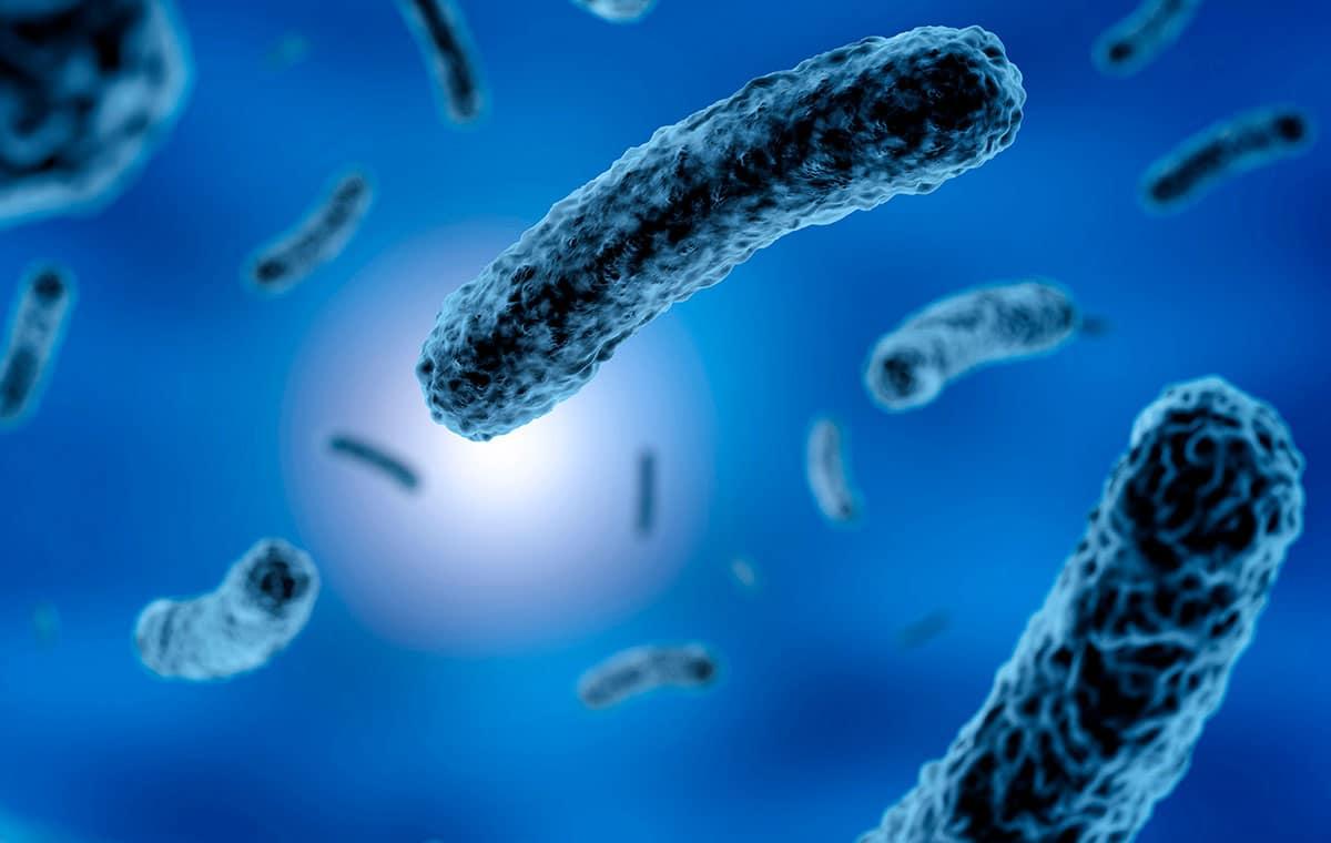 bacteriostático y bactericida destacada