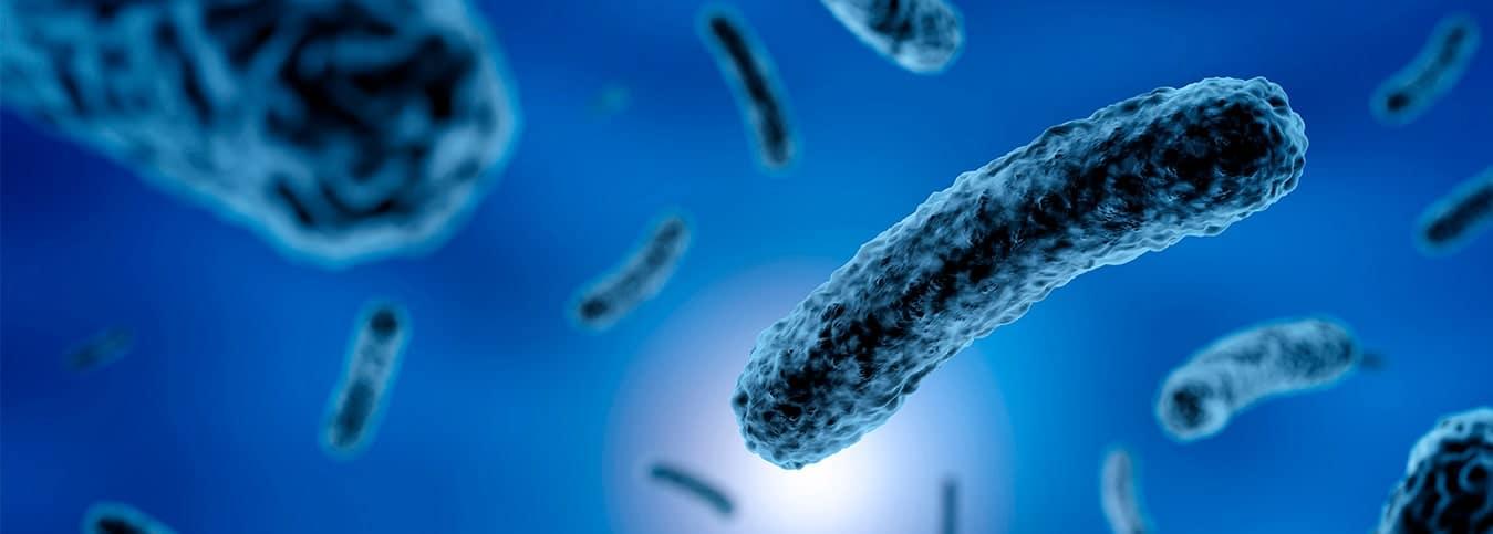 ¿qué es bacteriostático?